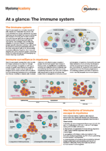 myeloma-uk-at-a-glance-the-immune-system